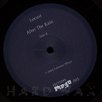 Cover art - Locust: After The Rain