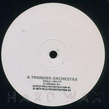Cover art - A Thunder Orchestra: Shall I Do It?