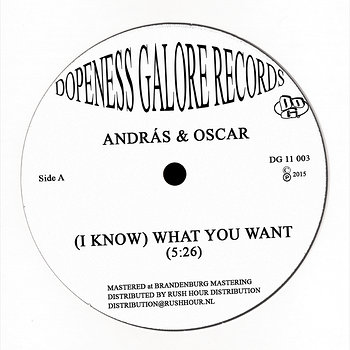 Cover art - Andras & Oscar: (I Know) What You Want