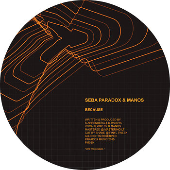 Cover art - Seba, Paradox & Robert Manos: Because