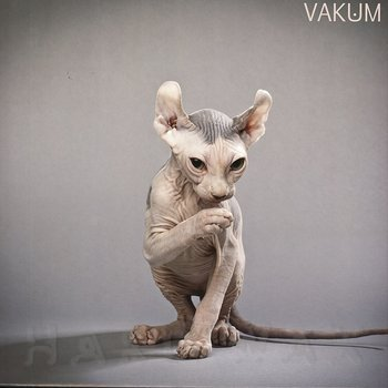 Cover art - Vakun: Knot