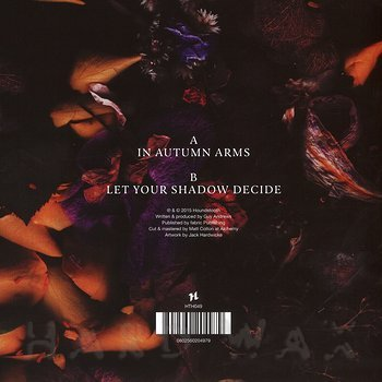 Cover art - Guy Andrews: In Autumn Arms