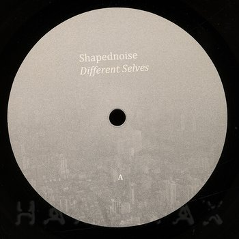 Cover art - Shapednoise: Different Selves