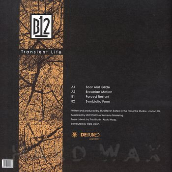 Cover art - B12: Transient Life