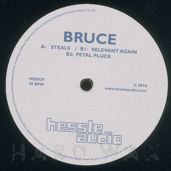Cover art - Bruce: Steals
