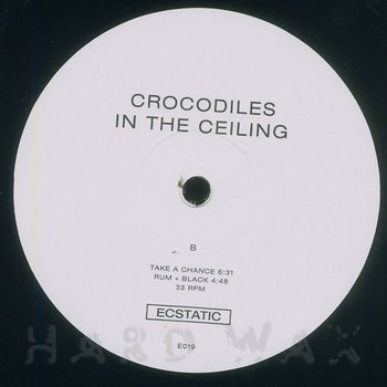 Cover art - L/F/D/M: Crocodiles In The Ceiling