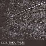 Cover art - Moljebka Pvlse: In Love And Death. You Are Alone
