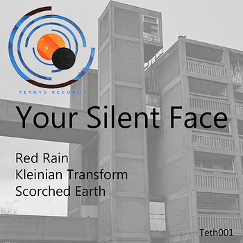Cover art - Your Silent Face: Red Rain
