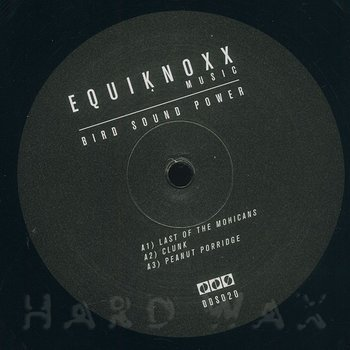 Cover art - Equiknoxx: Bird Sound Power