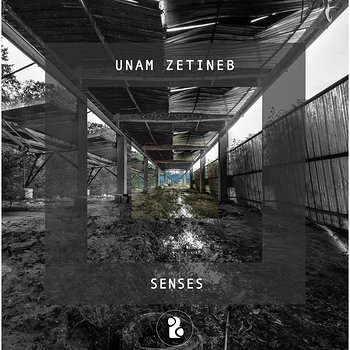 Cover art - Unam Zetineb: Senses