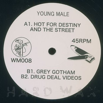 Cover art - Young Male: Hot For Destiny And The Street