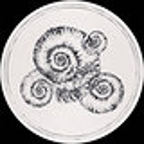 Cover art - Roberto: Perisphinctes Tiziani Remixes