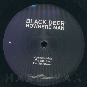 Cover art - Black Deer: Nowhere Man
