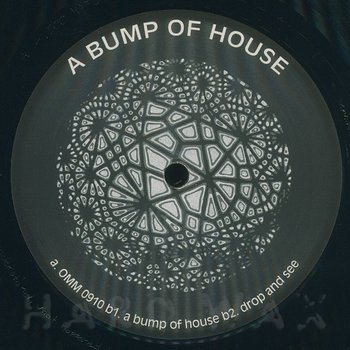 Cover art - Reade Truth: A Bump Of House
