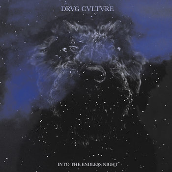 Cover art - Drvg Cvltvre: Into The Endless Night