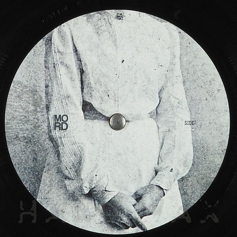 Cover art - Haeken: Oracle