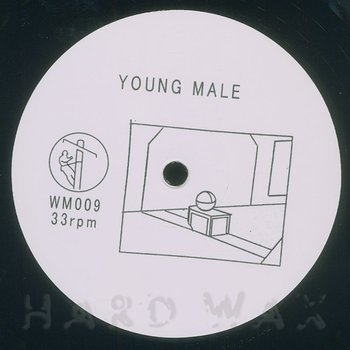 Cover art - Young Male: How To Disappear In America