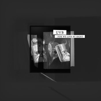Cover art - UVB: For We Live By Sight