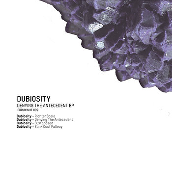 Cover art - Dubiosity: Denying The Antecedent