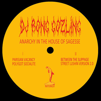 Cover art - DJ Bong Gozling: Anarchy In The House Of Sagesse