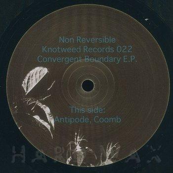 Cover art - Non Reversible: Convergent Boundary