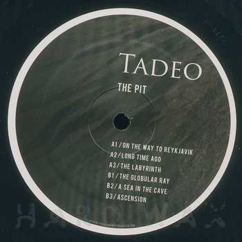 Cover art - Tadeo: The Pit
