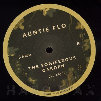 Cover art - Auntie Flo: The Soniferous Garden