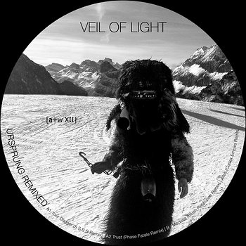 Cover art - Veil Of Light: Ursprung Remixed