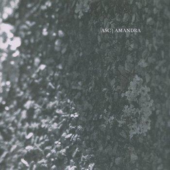 Cover art - ASC / Amandra: Eidetic