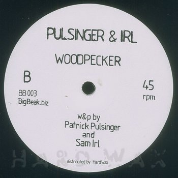 Cover art - Pulsinger & Irl: Function Creep