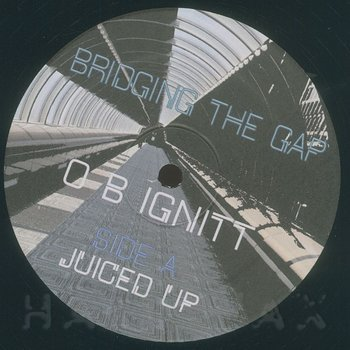 Cover art - OB Ignit: Bridging The Gap
