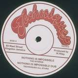 Cover art - The Interns: Nothing Is Impossible