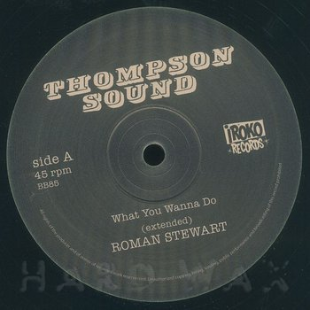 Cover art - Roman Stewart: What You Wanna Do