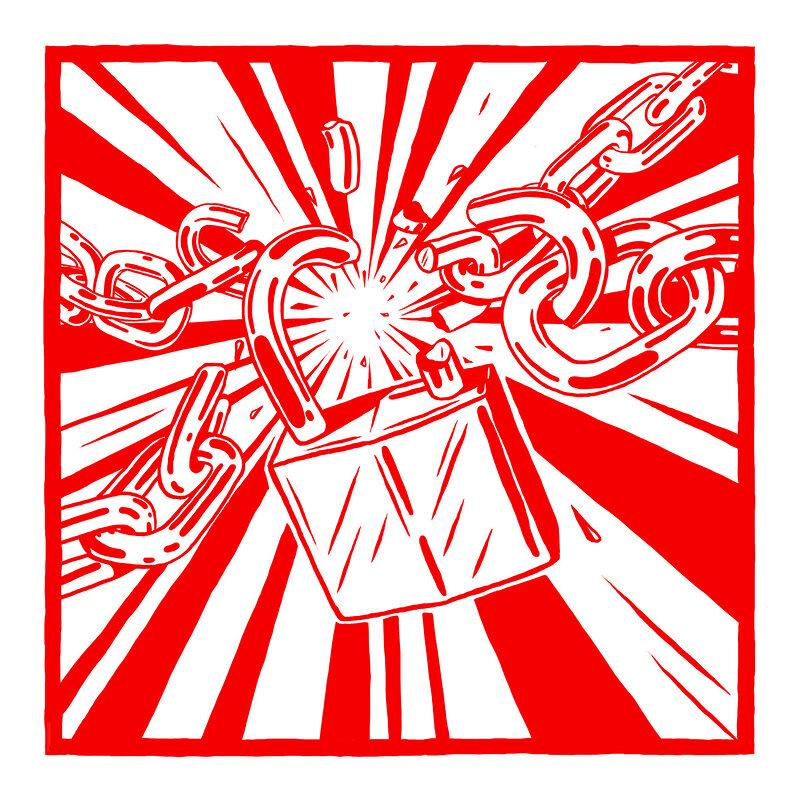 Cover art - Rider Shafique: Lion