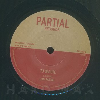 Cover art - Liam Partial: 73 Salute