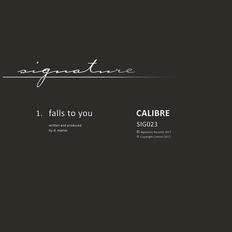 Cover art - Calibre: Falls To You