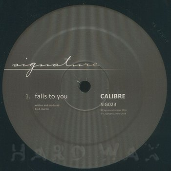 Cover art - Calibre: Falls To You