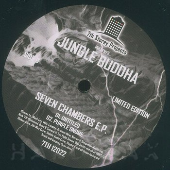 Cover art - Jungle Buddha: Seven Chambers EP