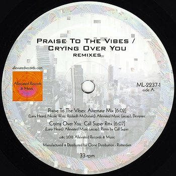 Cover art - Mr. Fingers: Praise To The Vibes / Crying Over You Remixes