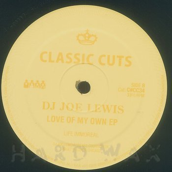 Cover art - DJ Joe Lewis: Love Of My Own