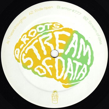 Cover art - D_Roots: Stream Of Data