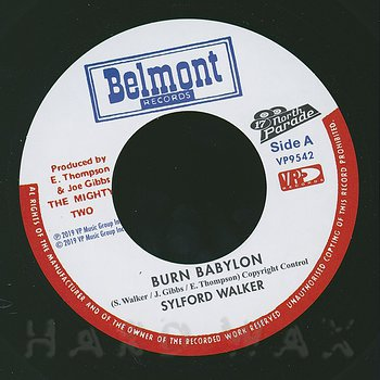 Cover art - Sylford Walker: Burn Babylon