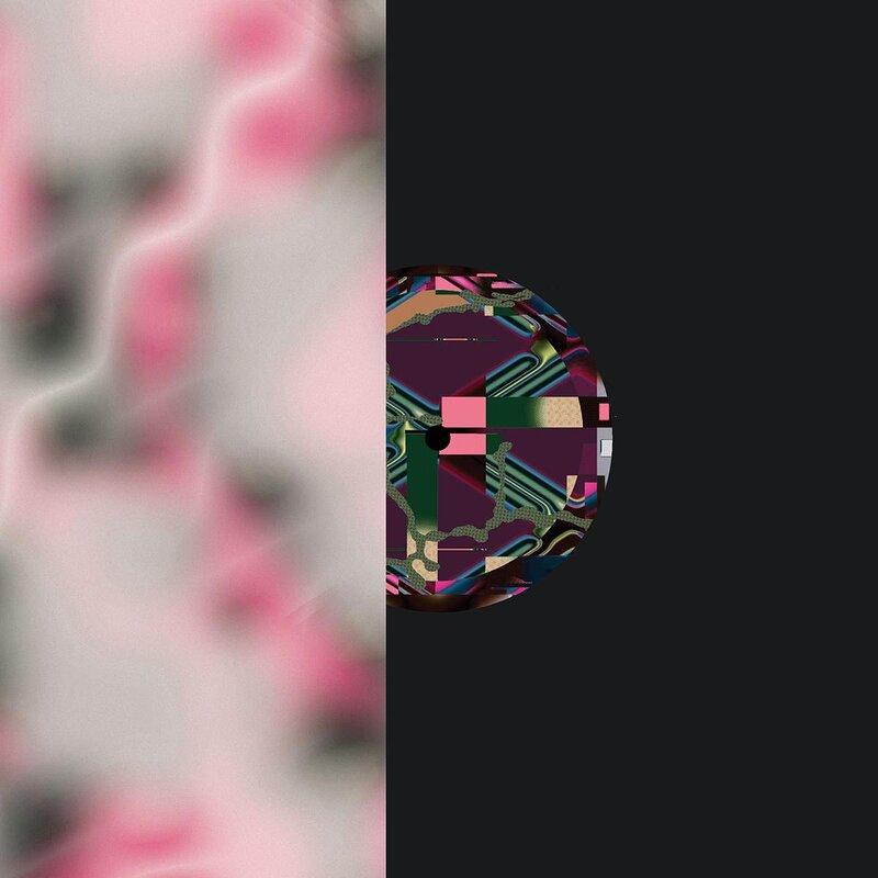 Cover art - M.S.L.: 2020