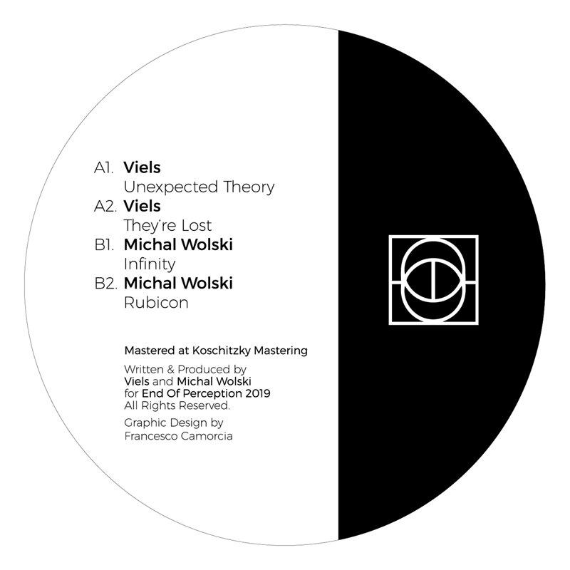 Cover art - Viels / Michał Wolski: Unexpected Theory