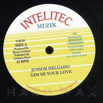 Cover art - Junior Delgado: Gim Mi Your Love