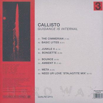 Cover art - Callisto: Guidance Is Internal : Part 3