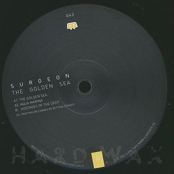 Cover art - Surgeon: The Golden Sea