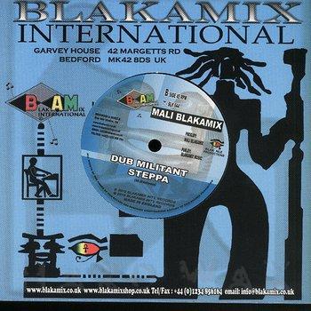 Cover art - Aba Ariginal meets Mali Blakamix: Ariginal Militant Steppa