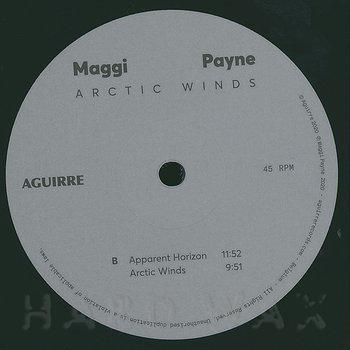 Cover art - Maggi Payne: Arctic Winds