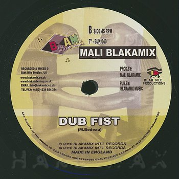 Cover art - Mali Blakamix: Iron Fist